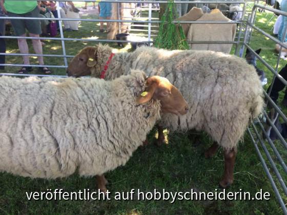 Der 29. Rheinische Wollmarkt in Euskirchen Bild 2