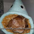 Mehr Katzenhöhlenbilder
