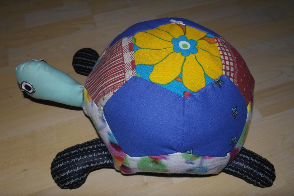 Schildkröte als Sitzkissen