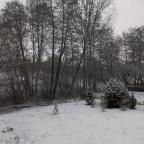 Weiße Pest am Rande der Nordvogesen
