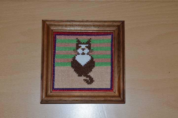 Kleines Katzenbild