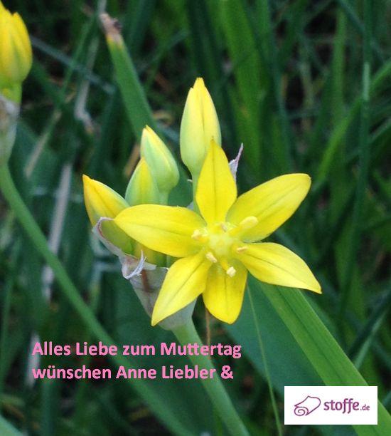 Muttertag Anne Liebler stoffe.de
